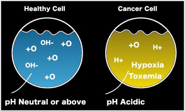 Healthy Alkaline Water